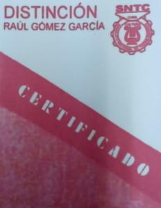 Distincion Raul Gomez Garcia