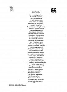 Poema_Guayabera