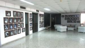 galeria...........